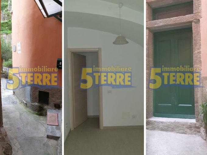 RIOMAGGIORE affittasi fondo (cod. 550)