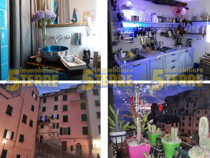 Riomaggiore Appartamento dei cactus (cod. 318)