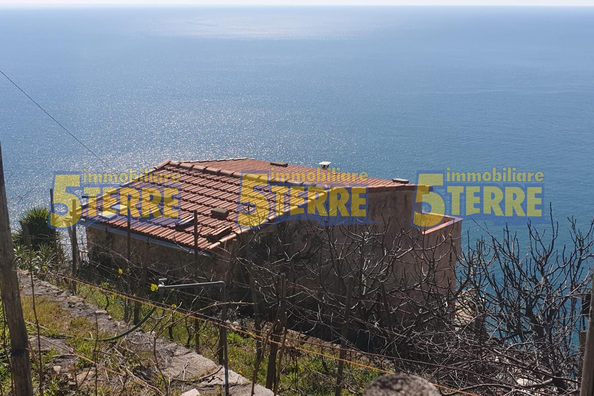 5 Terre typical immense farmhouse with sea view (code 332)