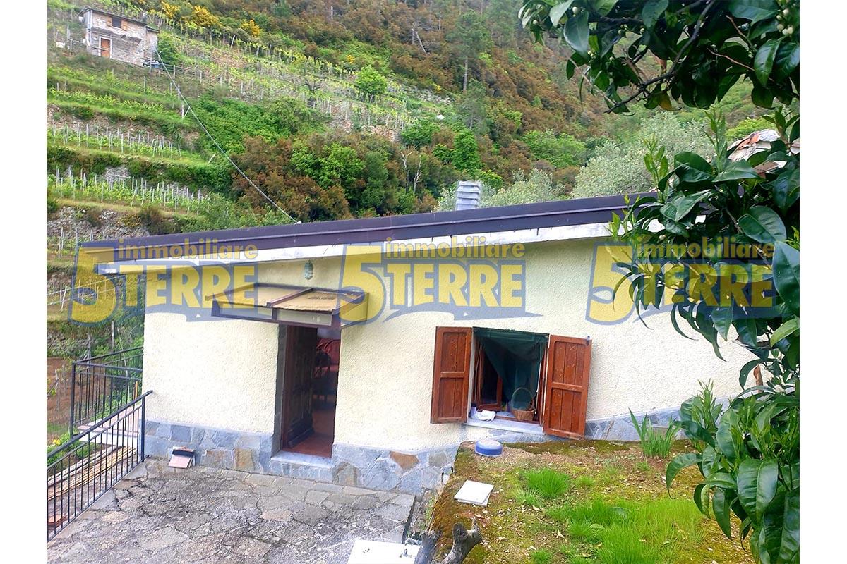 Riomaggiore – casale (cod. 501)