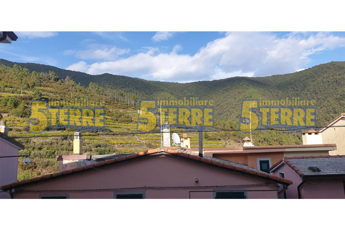 Appartamento sopra Manarola in caratteristico Borgo Ligure (cod. 251)